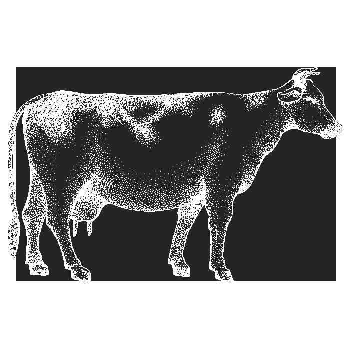 Produse din carne de vită